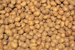 De achtergrond van de aardappel Royalty-vrije Stock Afbeelding