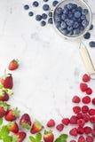 De Achtergrond van de Aardbeienbosbessen van bessenframbozen Stock Foto