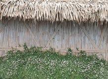 De achtergrond van de bamboemuur Royalty-vrije Stock Afbeeldingen