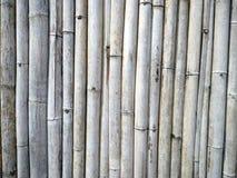 De achtergrond van de bamboemuur Stock Fotografie