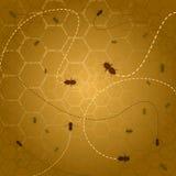 De achtergrond van de bijenkorf Stock Foto's