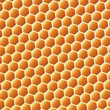 De achtergrond van de bijenkorf royalty-vrije stock afbeelding