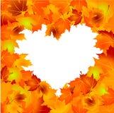 De achtergrond van de Bladeren van de herfst Stock Foto's