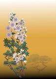 De achtergrond van de bloem Royalty-vrije Stock Afbeeldingen