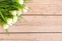 De achtergrond van de bloem Stock Afbeelding