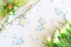 De achtergrond van de bloem Royalty-vrije Stock Foto's