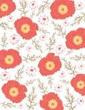 De achtergrond van de bloem met papaver Royalty-vrije Stock Fotografie