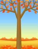 De Achtergrond van de Boom van de herfst royalty-vrije illustratie