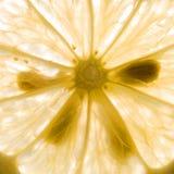 De achtergrond van de citroen Stock Foto