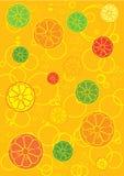De achtergrond van de citrusvrucht Royalty-vrije Illustratie