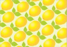 De achtergrond van de citrusvrucht Stock Illustratie