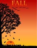 De Achtergrond van de daling/van de Herfst/eps Stock Foto's