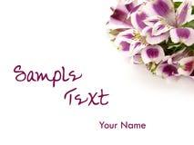 De achtergrond van de de bloemkaart van Alstroemeria stock afbeelding