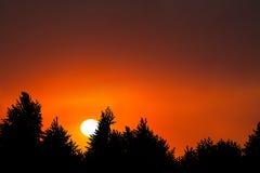 De Achtergrond van de de Bomenaard van de zonsopgangzonsondergang Stock Foto