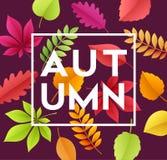 De achtergrond van de de herfstbanner met document dalingsbladeren Vector illustratie Stock Afbeelding