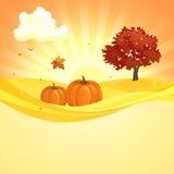 De achtergrond van de de herfstzonsondergang Stock Fotografie