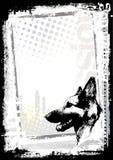 De achtergrond van de de hondaffiche van de Duitse herder Royalty-vrije Stock Afbeeldingen