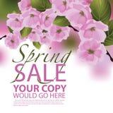 De achtergrond van de de lenteverkoop Stock Afbeeldingen