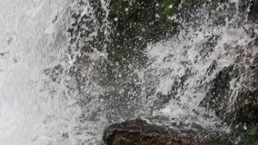 De achtergrond van de de lentewaterval stock video