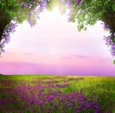 De achtergrond van de fantasie Magisch bos stock afbeelding