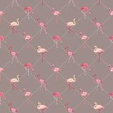 De Achtergrond van de flamingovogel Stock Afbeelding