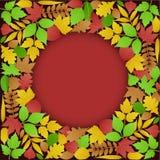De Achtergrond van de groene en Bladeren van de Herfst royalty-vrije illustratie