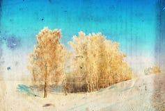De achtergrond van de Grungewinter met berkbomen Stock Foto