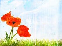 De achtergrond van de Grungezomer met heldere papaverbloemen Royalty-vrije Stock Foto's