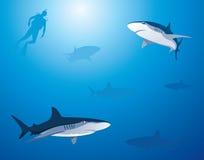 De Achtergrond van de haai stock illustratie