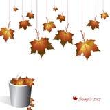 De achtergrond van de herfst. Stock Foto's