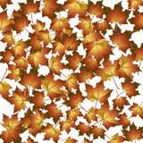 De achtergrond van de herfst. Royalty-vrije Stock Afbeeldingen
