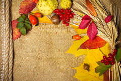 De achtergrond van de herfst royalty-vrije stock afbeelding