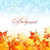De achtergrond van de herfst. de winter achtergrond Royalty-vrije Stock Afbeelding