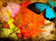 De achtergrond van de herfst grunge Royalty-vrije Stock Afbeeldingen