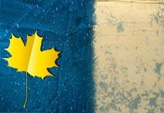 De achtergrond van de herfst grunge Stock Fotografie
