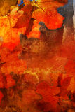 De achtergrond van de herfst grunge Royalty-vrije Stock Afbeelding