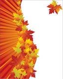 De achtergrond van de herfst met bladeren Royalty-vrije Stock Foto