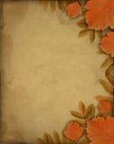 De achtergrond van de herfst met bladeren Stock Afbeelding