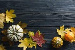 De achtergrond van de herfst met pompoenen en bladeren Stock Afbeelding