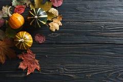 De achtergrond van de herfst met pompoenen en bladeren Stock Foto