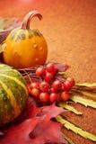 De achtergrond van de herfst Rode en oranje het bladclose-up van de kleurenKlimop Stock Afbeelding