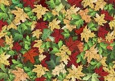 De achtergrond van de herfstbladeren Royalty-vrije Stock Foto