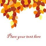 De achtergrond van de herfstbladeren met plaats voor uw tekst Stock Afbeelding