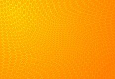 De Achtergrond van de honing Stock Fotografie