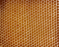 De achtergrond van de honingraat Stock Afbeeldingen