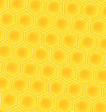 De achtergrond van de honingscellen van de bij Royalty-vrije Stock Afbeeldingen