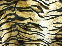 De Achtergrond van de Huid van de tijger Royalty-vrije Stock Afbeeldingen