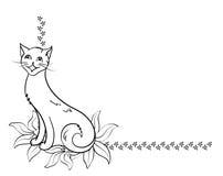 De achtergrond van de kat Royalty-vrije Stock Afbeeldingen