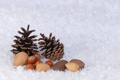 De achtergrond van de kerstkaart van denneappels en noten Royalty-vrije Stock Afbeelding