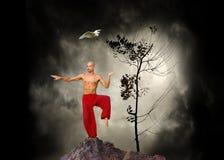 De Achtergrond van de Kungfu van vechtsporten Stock Afbeeldingen